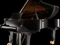 Đàn piano Steinway & Sons C-227 cao cấp