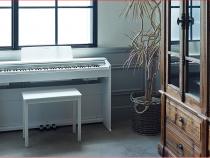 Tổng quan về đàn piano điện Casio Privia