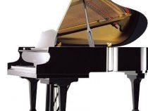 Đàn Piano Ritmuller 148R1 Chính Hãng Giá Tốt