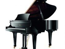 Đàn Piano Essex EGP-173C Chính Hãng Giá Tốt
