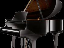 Đàn Piano Steinway & Sons M-170 Chính Hãng Giá Tốt