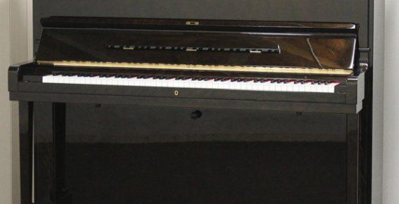 Đàn Piano Tonica 131