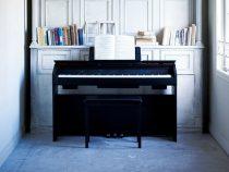 Nên mua đàn piano điện tại cửa hàng nào?