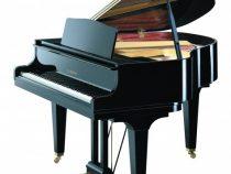 Bảng giá các loại đàn grand piano tại Việt Thanh