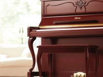 Bảng giá đàn piano Essex chính hãng cập nhật mới nhất