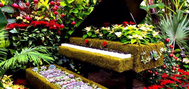 Dùng đàn piano cũ trang trí vườn nhà đẹp không tưởng