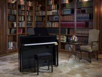 Chỗ bán đàn piano điện tại Bình Dương