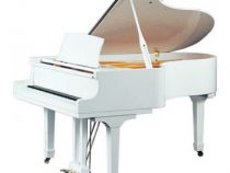 Khám phá 3 cây đàn piano màu trắng