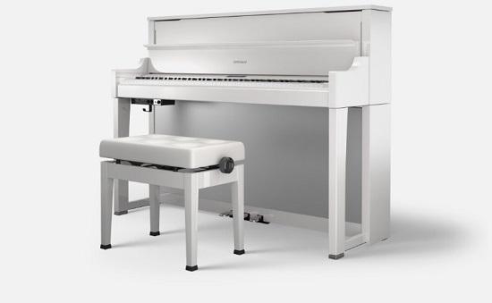 Loại đàn với kiểu dáng giống upright đơn giản ( bán chuyên nghiệp)