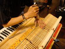 Chỗ sửa đàn piano cơ uy tín ở Tphcm